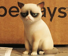 3D Printed Grumpy Cat