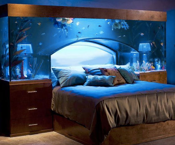 aquarium-bed1.jpg
