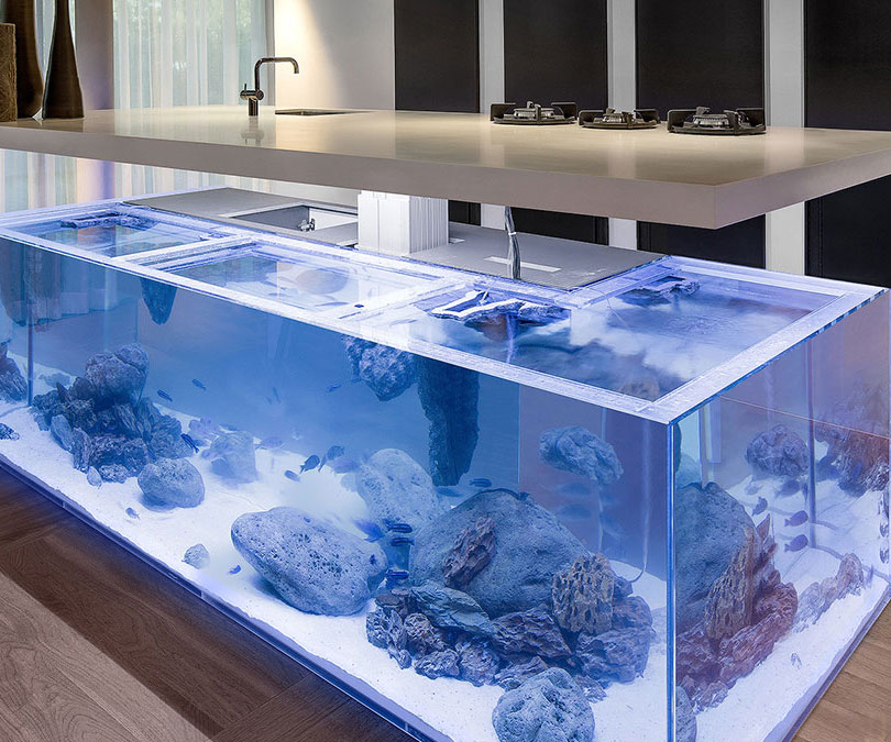 kitchen table aquarium images. Black Bedroom Furniture Sets. Home Design Ideas