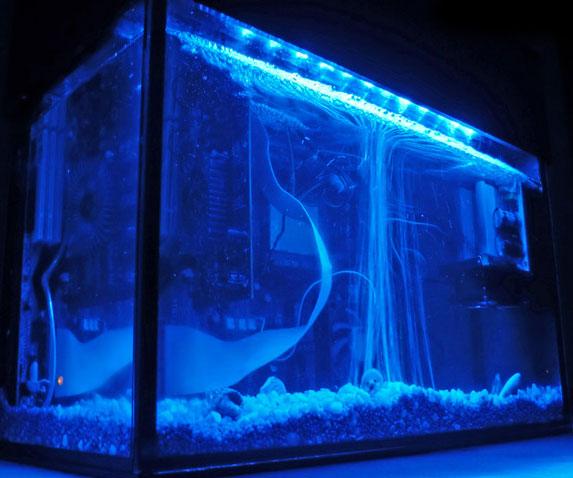 aquarium-pc