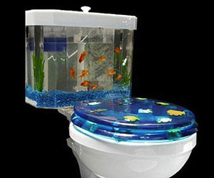 Fishbowl Toilet
