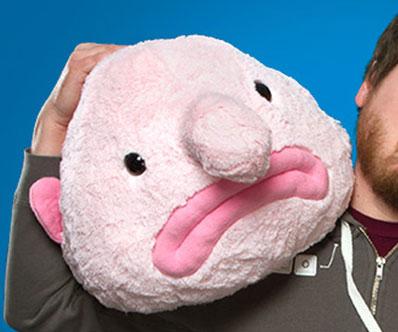 Ontoysrevil blobby the blobfish plush from hashtag for Ugly fish blob