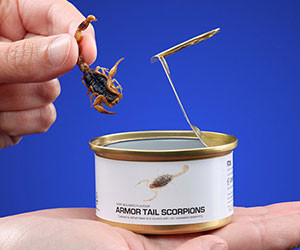 Gourmet Canned Bugs