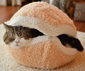 Cat Burger Pillow