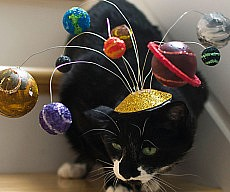 cat-center-of-the-universe-hat