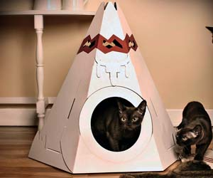 cat-teepee-bed