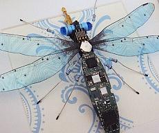 Circuit Board Bugs