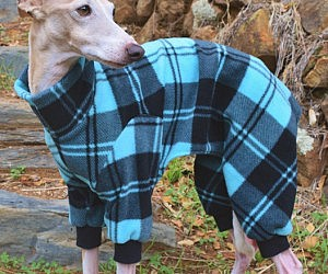 Dog Pajamas