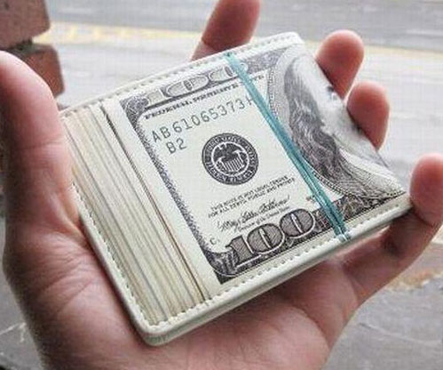 Dollar Stacks Wallet