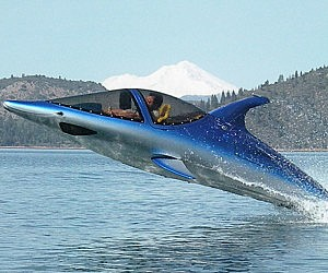 Dolphin Power Boat