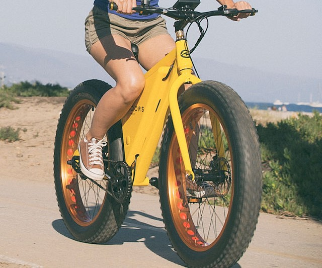 The Affordable Electric Bike