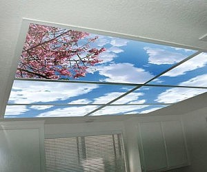 Faux Sky Light Diffusers