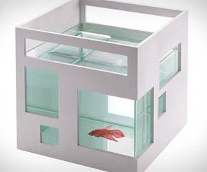 fish-condo-aquarium
