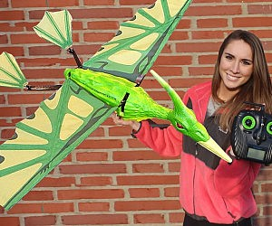 Flying Radio Controlled Pterodactyl
