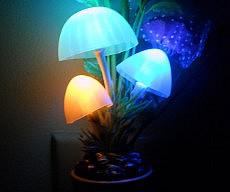 glowing-mushrooms