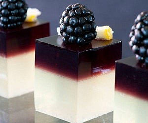 Gourmet Jello Shots Recipe Book