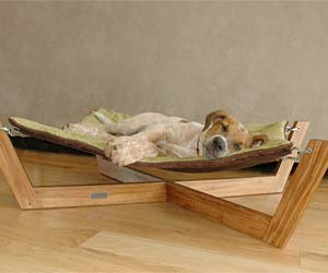 hammock-dog-bed