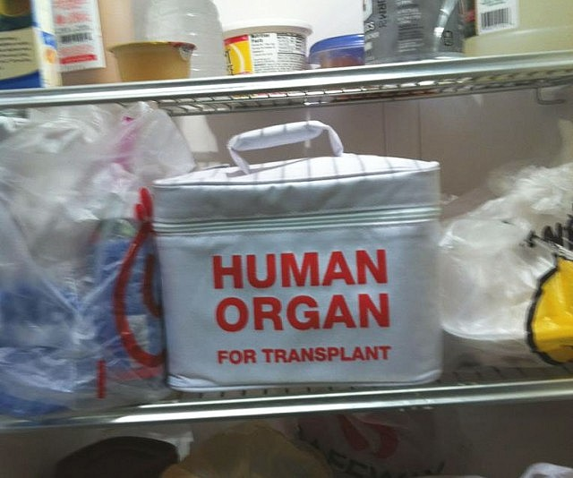 Human Organ Transport Lunch Bag