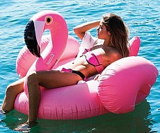 inflatable-flamingo