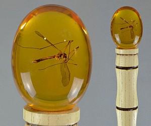 Jurassic Park Mosquito Cane Replica