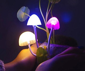 Light Up Mushroom Lamps