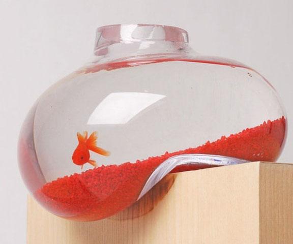 melting-bubble-fish-tank