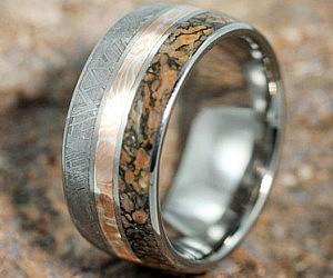 Meteorite And Dinosaur Bone Ring