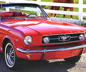 Modernized 1965 Ford Mustang Replica