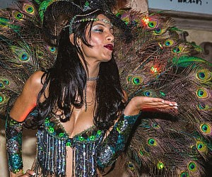 Peacock Dancer Costume