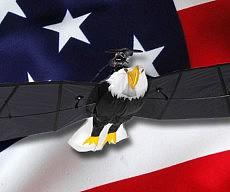 rc-bald-eagle