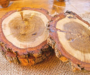 Rustic Wood Drink Coasters