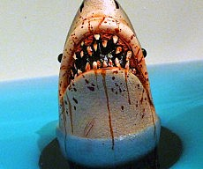 shark-tub-drain-stopper