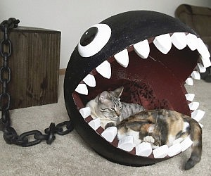 Chain Chomp Cat Bed
