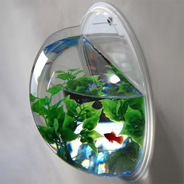 Wall Mounted Betta Fish Tanks Wall Mounted Fish Bowl