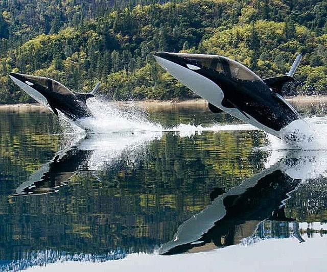 Killer Whale Submarine