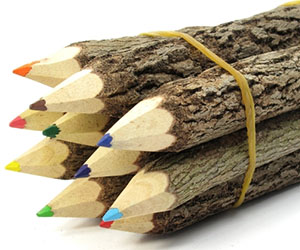 wooden-branches-colored-pencils